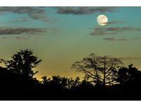 85年來離最近!「超級滿月」在明晚 鄭明典:值得抬頭看