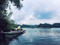竹林輝映湖光山色 畫一般的台南夢之湖超仙超美