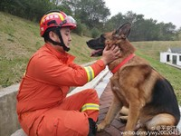 「我們像兄弟!」退伍消防兵的牽掛...想帶走搜救犬戰友