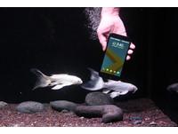 HTC 10 evo 七大特色搶先看、實機動手玩!12月1日上市