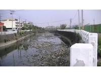 中市興建梧棲大排水質淨化設施 改善水質生態及周邊環境