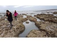 桃市府農業局要求 中油應做好海岸環境及藻礁保護