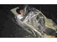 4名男大生相約山洞「探險」 驚見洞底躺著一個人!