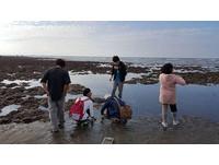 環團:大潭藻礁不保,地方父母官要負最大責任!