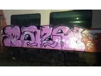 從北到南噴漆多輛台鐵列車 2外籍藝術工作者:留作品紀念