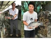 大陸搶買唯一「純海水養殖」吳郭魚 老闆:魚種要留台