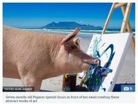 叫牠畢卡索!小豬脫離骯髒屠宰場 咬筆桿畫出繽紛新世界