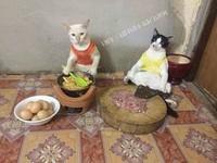 菜販、肉舖老闆全是貓!? 歡迎來到貓咪王國的菜市場
