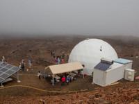 製「氧」器彷彿人造樹 未來火星上可以大口呼吸