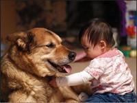 小孩對貓狗過敏?懷孕不能養寵物? 3重點讓妳安心!