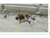奈國3歲童死橋邊蒼蠅亂飛 下體還遭「採G怪」偷走...