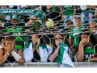 「我們的美夢變惡夢」 巴西全城一片綠悼念足球隊3日