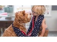 3歲小孤兒與狗狗一起被領養 成為形影不離的患難兄弟