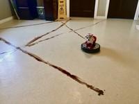 搭乘掃地機器人畫出「便便魔法陣」 萌汪:召喚剷屎官