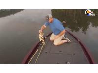 「落水貓」雙雙游過來 「啤酒肚釣客」秒拎脖子放甲板
