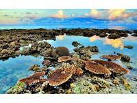 太平島收復70周年!南海科學研究成果大公開