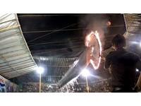 逼海豚跳火圈! 印尼巡迴馬戲團「用擔架帶著走」