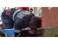 羅馬尼亞消防員屈膝跪地 嘴對嘴送氣救活被煙嗆昏黃狗