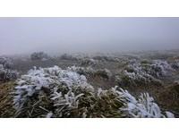 「銀白合歡山」結霜超美!忍3度低溫 山友雨夜衝追雪