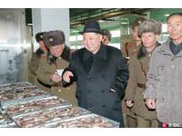 「冷凍魚像金磚」金正恩逼捕魚 害10漁民海上活活餓死