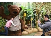 最貴「赫拉熊」11.2億韓幣 泰迪熊博物館逛到不想回家