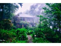 穿過花園是山谷雲海!如闖入宮崎駿電影的新竹森林秘境