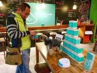聖誕免費狗糧吃到飽! 「吃多少就捐多少」給收容所毛孩