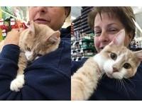 被前主人扔出車窗又險遭安樂死 橘貓被領養緊抱新媽媽