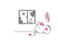 5招教你留意老貓身體狀況! 嘴巴臭狂嚼動恐患皮膚癌
