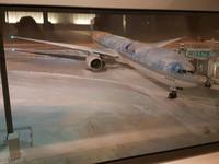 札幌大雪「跑道、飛機都結冰」 影響華航5航班300旅客滯留