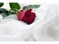 浙江女吃貨煮「99朵玫瑰」 網友:愛情怎拿來「吃」