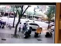 屁孩人行道「翹孤輪」耍帥 暴衝扭到路樹又慘撞ALTIS