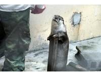 歐亞水獺孤兒長大了!自己上磅秤 訓練課「好好吃!」