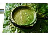 「尚青」的環保構想 葉子成免洗餐盤28天內就能分解