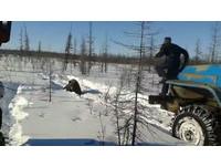 冰血暴!俄司機用卡車反覆輾壓棕熊 影片瘋傳