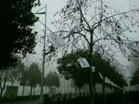 綿延百米「告白信」飄在濃霧中 詭異畫面超像來索命的!