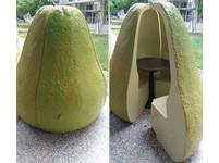 柚子或芭樂? 這張「造型座位」照片引發網友熱議!