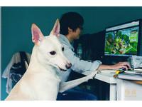 那年一起撿到浪浪 畢業後創工作室透過設計來關心動物