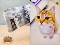 貓食界的Prime認證 專家鑑定卡安心