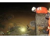 信徒把蟒蛇海鰻放生在沙灘就跑 消防員到場已死一片