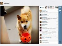 從蘑菇雲看到北極光 Instagram的最動人20瞬間