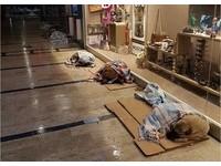 土耳其-3℃的溫暖!商場外每隻浪浪裹毛毯 一整排酣睡