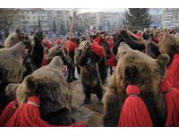 歐洲版舞龍舞獅! 羅馬尼亞鎮民「扮熊」跨年、求好運
