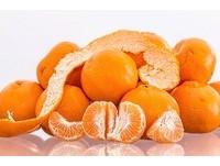 吃橘子不丟橘子皮! 3個「橘皮茶」超強功效...喝了變瘦