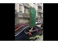 3公斤芭蕉扇新娘拿到皮皮挫 新郎太有才:這風量最大