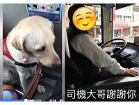 終於載到導盲犬!公車司機興奮「開擴音」隆重介紹40分鐘