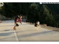 帶你看遍世界!他牽愛犬遊希臘 一起奔跑的畫面美哭網友