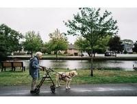 原以為人生將盡…92歲阿嬤驚喜相遇狗兒子 許願再闖世界