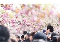 無故取消、坐霸王車 日本旅遊公司:台人不把信用當回事