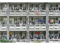 250高中教職聯署「先考後申請」  大學端打臉、有人挺